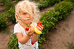 Anna Bell, age three, showing freshly harvested produce  from her family's fields at Bell Organic Gardens in Sandy Utah.