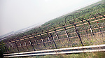 Photo shows the wire fencing that marks the start of the the demilitarized zone (DMZ) some 50 km north of Seoul, South Korea on 24 June 2010..Photographer: Rob Gilhooly .