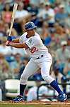 19 March 2006: Jose Cruz, Jr., outfielder for the Los Angeles Dodgers, at bat during a Spring Training game against the Washington Nationals at Holeman Stadium, in Vero Beach, Florida. The Dodgers defeated the Nationals 9-1 in Grapefruit League play...Mandatory Photo Credit: Ed Wolfstein Photo..