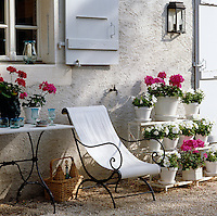 A wrought-iron garden chair with a canvas seat is surrounded by pink and white flowering pot plants