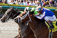 HALLANDALE BEACH, FL - JANUARY 28: #3 Imperative with jockey Antonio Gallardo up (green cap) duels with #4 Stanford to the the $400K Poseidon at Gulfstream Park. (Photo by Arron Haggart/Eclipse Sportswire/Getty Images