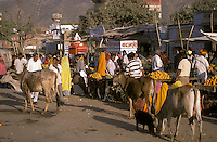India, Rajasthan, Pushkar, bus station market