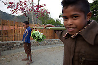 Two young boys try to sell lettuce in the mountain town of Laclubar, Timor-Leste on Tuesday, Oct. 18th, 2011.  Photographer: Daniel J. Groshong/The Hummingfish Foundation