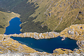 Mount Burns Tarns Track, Fiordland