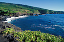 Coastline at Oheo Pools area, Kipahulu District, Haleakala National Park, Maui, Hawaii...