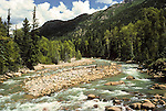 The Animas River in the San Juan Range, Colorado
