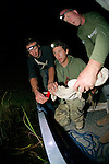 George & Piers Releasing Crocodile