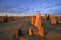Pinnacles Desert at Sunset.Nambung Natl. Park.Western Australia.Australia