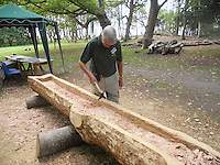 BNPS.co.uk (01202 558833).Pic: PeterWillows/BNPS..Labour intensive work on the Brownsea island oak tree to convert it into an ancient logboat...A sight unseen in Poole harbour in Dorset for 2000 years - The National Trust has constructed a Celtic log boat in tribute to the one discovered in the harbour in 1964 and now preserved in the Poole museum...