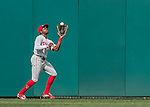 11 September 2016: Philadelphia Phillies outfielder and Baseball America top prospect Roman Quinn pulls in the 2nd out of the 6th inning in his major league debut game against the Washington Nationals at Nationals Park in Washington, DC. The Nationals edged out the Phillies 3-2 to take the rubber match of their 3-game series. Mandatory Credit: Ed Wolfstein Photo *** RAW (NEF) Image File Available ***