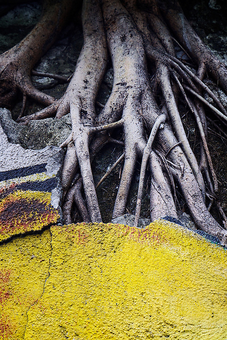 Urban Colors and wall Art, close ups of Brush Strokes from Graffiti on numerous walls in Manila Philippines.