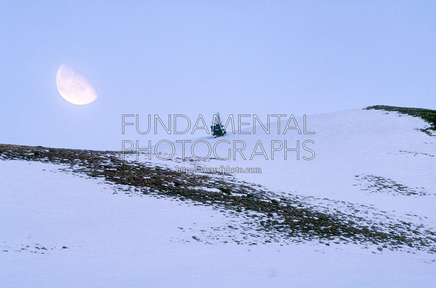 MOON PHASES<br /> Waning Gibbous Moon Over Snowy Landscape