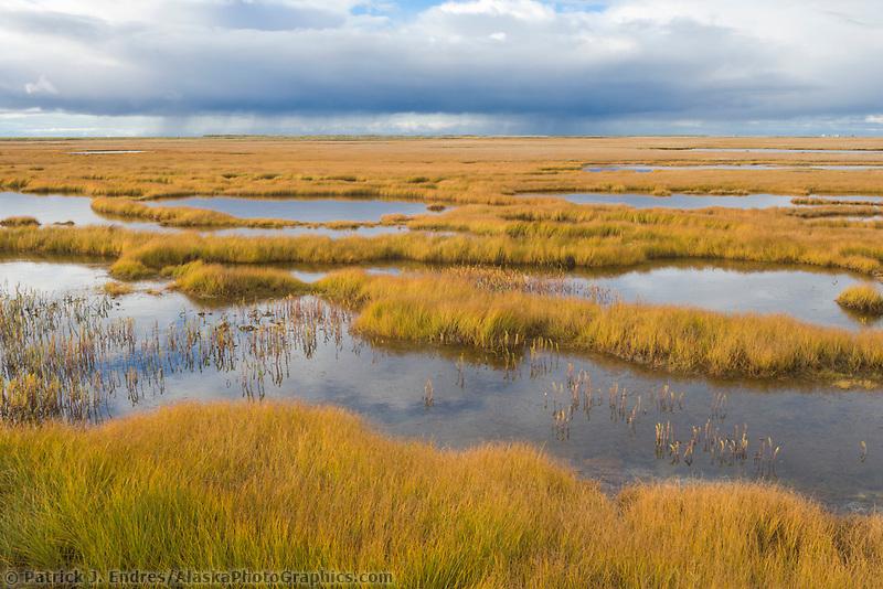 Wetlands near Solomon, Seward Peninsula, western arctic, Alaska.