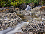 Low tide exposing barnacle covered rocky shoreline with cascading stream in the temperate rain forest of coastal Britsh Columbia, Canada, known as the Great Bear. With fjords and inlets along the Douglass Chanel (the proposed super-tanker route along Canada's, B.C. coast).