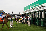 The starting crew loads the gates for a grass track horse race at Churchill Downs in Louisville, Kentucky. Start crews work seasonally and are busy during Triple Crown season which includes the Kentucky Derby at Churchill Downs in Louisville, Kentucky.