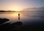 Trout fishing in Lake Brunner at sunrise. Westland Region. New Zealand.