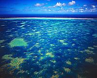 Hardy Reef, Great Barrier Reef Marine Park, Queensland, Australia    UNESCO World Heritage Site