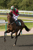 Sept 04 2009; Lingfield Park, Surrey;  Kieren Fallon (IRL) riding Rare Malt, owned by Mr K Dasmal and trained by Miss A Weaver in the Withyham Median Auction Maiden Stakes. This is Fallon's return to racing having been absent from British racecourses since July 2006 due to a combination of the Old Bailey trial into alleged race-fixing, which ended in the judge ruling there was no case to answer, and an 18-month drugs suspension imposed by the French authorities: Mitchell Gunn-Sportsphotographer.eu