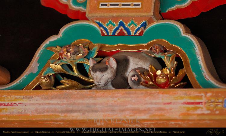 Nemuri Neko Sleeping Cat Hidari Jingoro Nikko Toshogu Shrine Nikko Japan