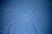 Ski tracks cut through fresh powder snow at Showdown Ski Area on King's Hill in the Little Belt Mountains near Neihart, Montana, USA.