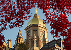Nov. 7, 2013; The statue of Mary atop the Golden Dome of the Main Building. Photo by Barbara Johnston/University of Notre Dame