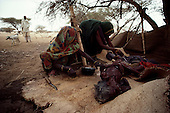 liberated Eritrea..February 1985....A woman that left her home with two children, migrated to a camp in Eritrean Peoples Liberation Front (EPLF) held territory only for her and her older child to die of starvation. Her younger child survived.....Her body is washed in a ceremonial fashion before burial.