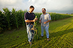 (Left to Right)Tim and Steve Reinhard look at the progress of their corn on their farm in Bucyrus, Ohio..The Reinhard Farm in Bucyrus, Ohio.