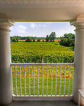 The view from the upstairs porch of the manor house at General's Ridge Vineyard and Winery.