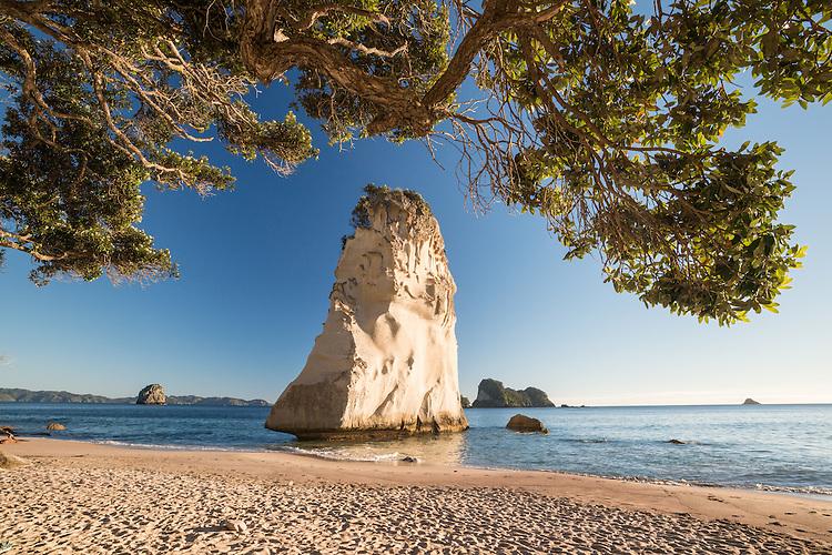 Te Hoho Rock, Cathedral Cove, Coromandel, New Zealand - stock photo, canvas, fine art print