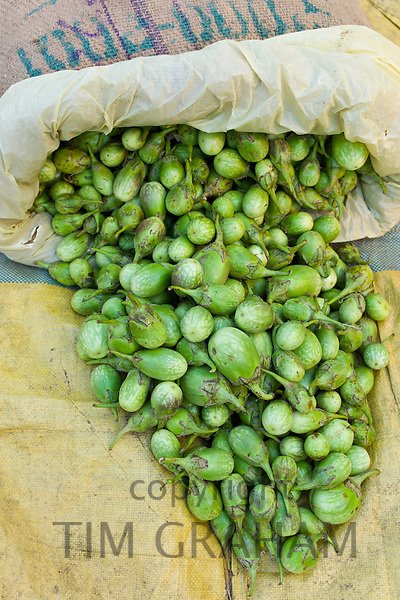 Old Delhi, Daryagang fruit and vegetable market with green aubergines on sale, India