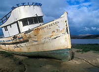 Old Point Reyes Ship