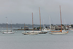 12 Meters on mooring, Newport, Rhode Island.