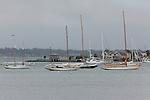 12 Meters on mooring, Newport, Rhode Island.