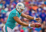 14 September 2014: Miami Dolphins punter Brandon Fields kicks to the Buffalo Bills at Ralph Wilson Stadium in Orchard Park, NY. The Bills defeated the Dolphins 29-10 to win their home opener and start the season with a 2-0 record. Mandatory Credit: Ed Wolfstein Photo *** RAW (NEF) Image File Available ***