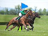 Middleburg Spring Races - 4/21/12