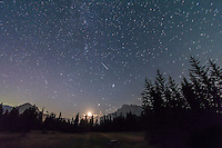 A pair of Perseid meteors shoot at left in the late night sky at the Upper Bankhead parking lot in Banff National Park. The  waning crescent Moon is just rising above the trees. A faint Perseid is at right, while a satellite trail goes from left to right as well. ..Taken the night of Saturday, August 11 into the wee hours of Sunday, August 12, 2012 with the Canon 7D and 10-22mm Canon lens. This is a stack of two exposures, one for each meteor, each for 60 seconds at ISO 1250 and f/4. The stars are trailed slightly due to the two-minute exposure time in total.