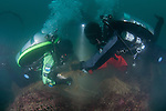 GUE (Global Underwater Explorers) divers work to remove an abandon ghost net from continuing to fish and destroy the marine environment. San Diego,Coronado Islands.