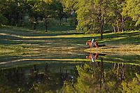 Single rider on horseback riding along a beautiful pond
