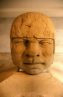 Colossal Olmec head in the Museum of Anthropology in Xalapa or Jalapa, Veracruz state, Mexico