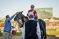 OLDSMAR, FLORIDA - FEBRUARY 11: Trainer Ian Wilkes congratulates McCracken #8, ridden by Brian Joseph Hernandez (pink hat), as he gets a cool down after winning the Sam F. Davis Stakes, and setting a new track record, at Tampa Bay Downs on February 11, 2017 in Oldsmar, Florida (photo by Douglas DeFelice/Eclipse Sportswire/Getty Images)