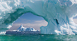 Ice is the hallmark element of Antarctica.  Giant icebergs are calved from the Antarctic mainland and float north, often stranding themselves around the small islands and inlets of the Antarctic Peninsula. Ice is becoming the prominent element from which scientists argue global climate change. During my most recent trip I focused on really capturing ice and icebergs in the most dramatic way.  In this shot I am framing one iceberg with the arch of another.  It's an unusual way of creating depth and drama in this otherwise white world.