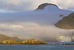 Mountains of South Georgia Island