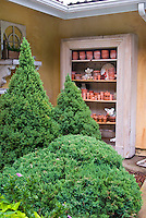 Shrubs evergreen conifers next to house wall with antique vintage finds and old pots for charming whimsical and cute style of design