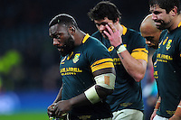 Tendai Mtawarira and other South Africa players look dejected after the match. Old Mutual Wealth Series International match between England and South Africa on November 12, 2016 at Twickenham Stadium in London, England. Photo by: Patrick Khachfe / Onside Images