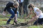 Foto: VidiPhoto<br /> <br /> DOORNENBURG - Tientallen kinderen van basisschool De Doornick in het Gelderse Doornenburg, gingen woensdag aan de slag om de omgeving van het kasteel te beplanten met 750 haagbeuken in twee rijen naast elkaar. Tegelijk met de Provinciale Statenverkiezingen werden woensdag door het hele land tijdens Boomfeestdag 200.000 nieuwe boompjes neergezet. Thema is dit jaar Bomen &amp; Water. De start van de Boomfeestdag was in Almere in aanwezigheid prinses Laurentien en staatssecretaris Sharon Dijksma. Aan de boomfeestdag dezen ruim 300 gemeenten en zo'n 100.000 kinderen mee.