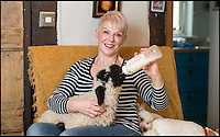 BNPS.co.uk (01202 558833)<br /> Pic: TomWren/BNPS<br /> <br /> Emma Childs gives Barry his daily feed.<br /> <br /> Baaa-king mad?<br /> <br /> It's a dogs life for 'Barry the lamb' - The precious Valais Blacknose lamb is being hand reared by owner Emma Childs after being rejected by his mother.<br /> <br /> Emma took Barry the lamb into her home last month so she could bottle-feed him round the clock after his mum rejected him as a newborn.<br /> <br /> Barry, now four weeks old, is a valuable rare Valais Blacknose, a breed that was only introduced to the UK from the Swiss Alps in 2014.