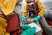 Crew from the Greenpeace ship Rainbow Warrior collect sea water samples to monitor radiation contamination levels, as the ship sails up the eastern coast of Japan, in the vicinity of Fukushima, in Japan, Tuesday 3rd May 2011..Collecting a sample of seawater at coordinates 37' 00.219 North, 141' 27.094 East.