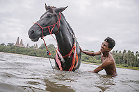 Johanes Ndara Kepala, a senior Pasola warrior after bathes his horse in Waiha river, near his village Wainyapu, Kodi. Pasola is an ancient tradition from the Indonesian island of Sumba. Categorized as both extreme traditional sport and ritual, Pasola is an annual mock horse warfare performed in response to the harvesting season. In the battelfield, the Pasola warriors use blunt spears as their weapon. However, fatal accident still do occurs.