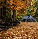 Simply Rural