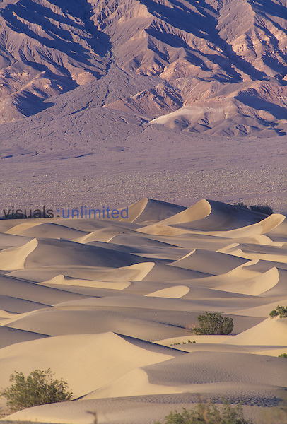 Sand Dunes, Death Valley, California, USA.